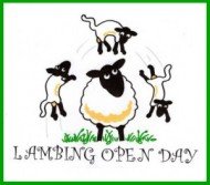 lambing day at pusto hill farm-event.jpg