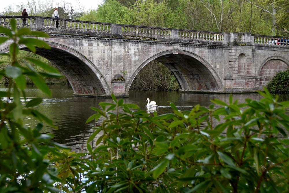 clumber bridge copyright di fisher photo den
