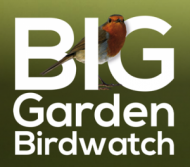 big-garden-birdwatch.png