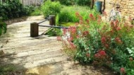 BBC - The Old Ragged School's Garden.JPG
