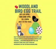 Woodland Bird Egg Trail event.png