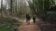BBC - Health Walk - Meden Trail.JPG