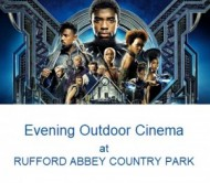 Outdoor cinema Rufford Abbey Black panther event.jpg