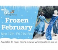 Frozen February at White Post Farm event.jpg