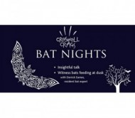 Bat Nights at Creswell Crags event.jpg
