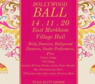Bollywood Ball event.jpg