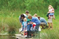 Pond dipping session at the Idle Valley.jpg