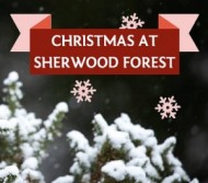 christmas at sherwood forest 2020 event.jpg