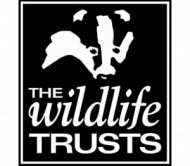 Wildlife-Trusts-logo-events.jpg