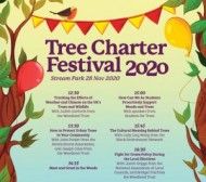 Woodland Trust Tree Charter Festival 2020 at Stream Park event1.jpg