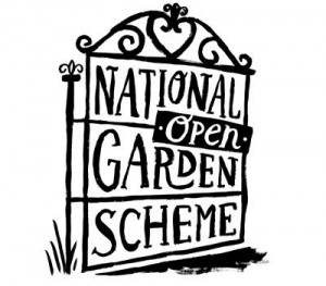 ngs-open-garden-event.jpg